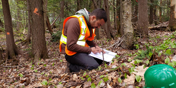 Caracterisation et identification de milieu naturel