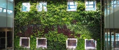 Mur de végétaux service environnemental de conception de murs végétalisé
